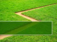 绿色草地植物PPT背景模板