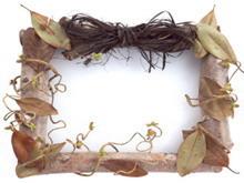 树藤相框PPT背景花边模板