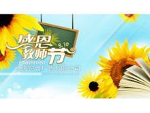 葵花朵朵感恩教师节PPT模板