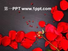 爱情红玫瑰PPT模板下载