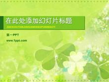 清新淡雅的三叶草植物幻灯片模板