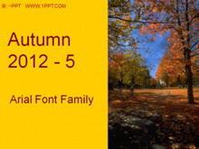 秋季落叶飘落旅游风景PPT模板