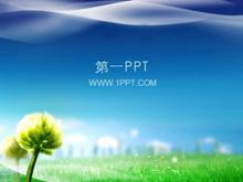 蓝天青草地植物PPT模板下载