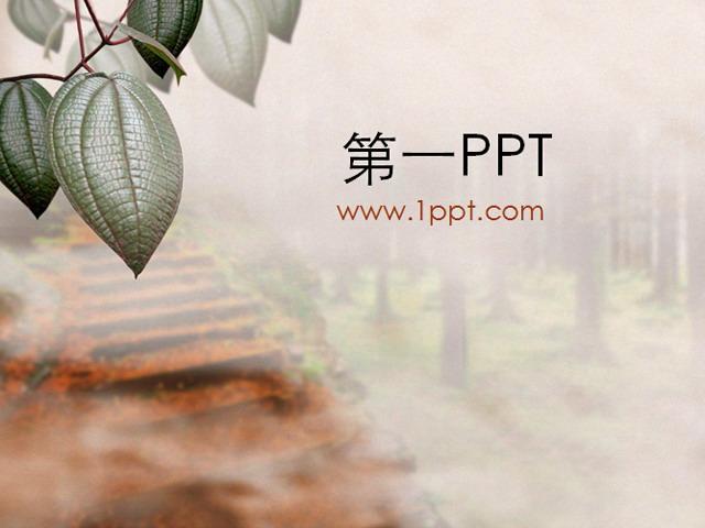 树叶背景ppt模板下载