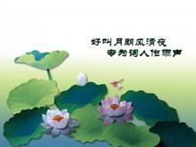 精美淡雅荷花背景植物类PPT模板