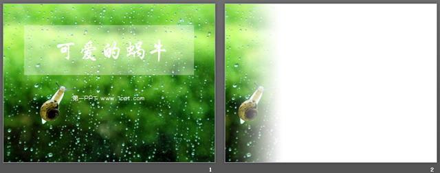 可爱蜗牛动物ppt模板下载,关键词:蜗牛,动物幻灯片,绿色背景,自然pp