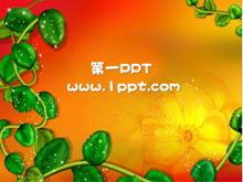 红色背景卡通植物PPT背景模板