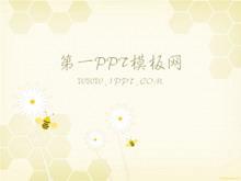 淡雅蜜蜂背景PPT模板下载