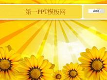 向日葵背景幻灯片模板下载