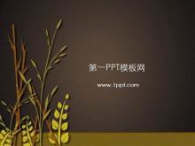 水稻小��背景植物�幻�羝�模板下�d