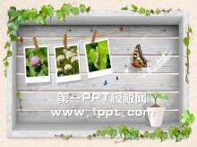 藤蔓蝴蝶PPT背景图片下载