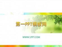 清新淡雅的藤蔓植物PPT模板下载