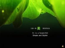 《给你一点绿》幻灯片动画下载