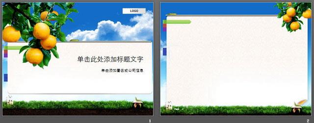 关键词:桔子,水果,蓝天,白云,草地幻灯片背景图片.
