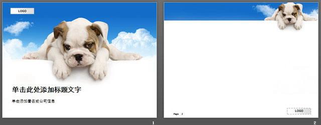 可爱的狗狗背景动物ppt模板下载