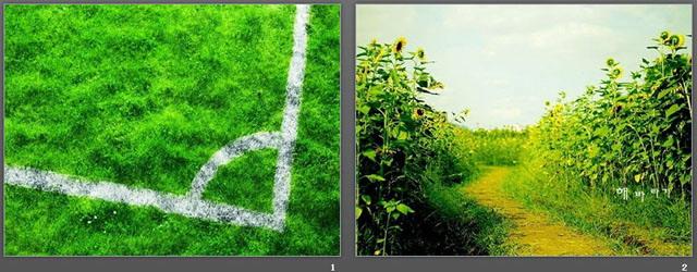竹子目录ppt背景图片