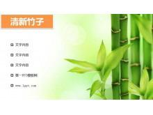 清新淡绿色的竹子PPT背景图片下载