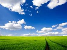 阳光明媚的田野PPT背景图片下载