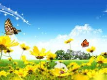 蝴蝶瓢虫野菊花PPT背景图片
