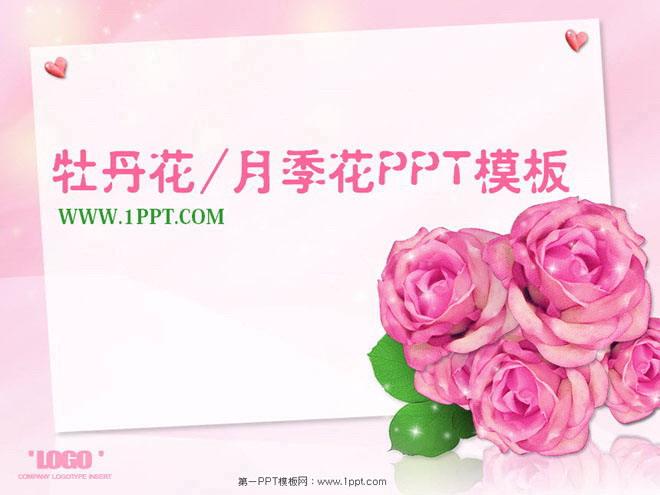关键词:粉色幻灯片背景,淡雅,动态ppt模板,牡丹花,月季花,鲜花幻灯片