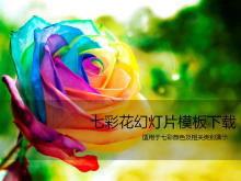 美��的七彩玫瑰花PPT模板下�d