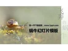 清新淡雅的蜗牛PowerPoint模板下载