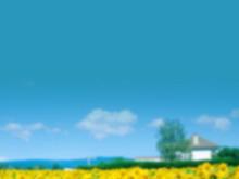 清新的朦胧背景自然风景PPT背景模板
