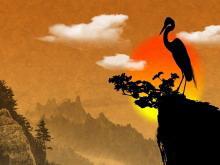 一组彩色中国风幻灯片背景图片下载