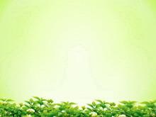 淡雅绿色背景的叶子绿叶幻灯片背景图片下载