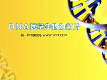 DNA链条背景的医疗医学生物科学幻灯片模板下载