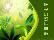 优雅绿色植物叶子背景的艺术设计PPT模板下载