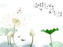 淡雅蜻蜓戏荷花中国风幻灯片片背景模板