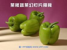 紫色菜椒背景的植物幻灯片模板