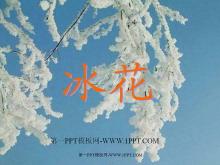冰花PPT教学课件tt娱乐官网平台2
