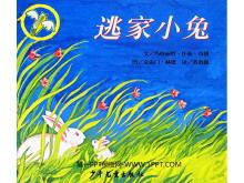 《逃家小兔》绘本故事PPT