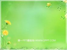 7张淡雅植物PPT背景图片
