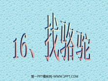 《找骆驼》PPT教学课件tt娱乐官网平台2