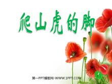 《爬山虎的脚》PPT教学课件下载3