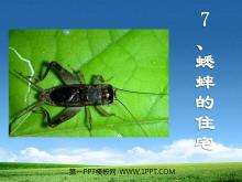 《蟋蟀的住宅》PPT教学课件下载2