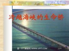 《跨越海峡的生命桥》PPT课件下载3