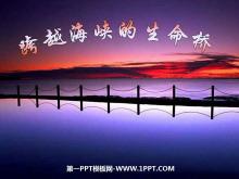 《跨越海峡的生命桥》PPT课件下载4