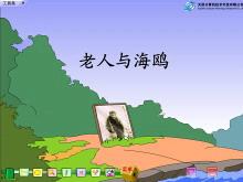 《老人与海鸥》Flash动画课件