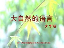 《大自然的语言》PPT课件2