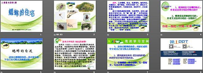 《蟋蟀的住宅》ppt教学课件下载4