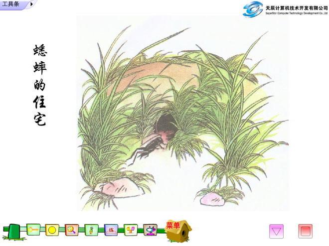 《蟋蟀的住宅》flash动画课件