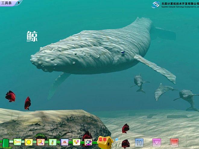 壁纸 动物 海洋动物 鱼 鱼类 桌面 660_495
