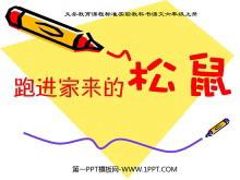 《跑进家来的松鼠》PPT课件tt娱乐官网平台2