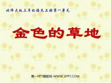 《金色的草地》PPT课件2