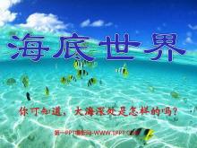 《海底世界》PPT课件