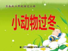 《小动物过冬》PPT课件2